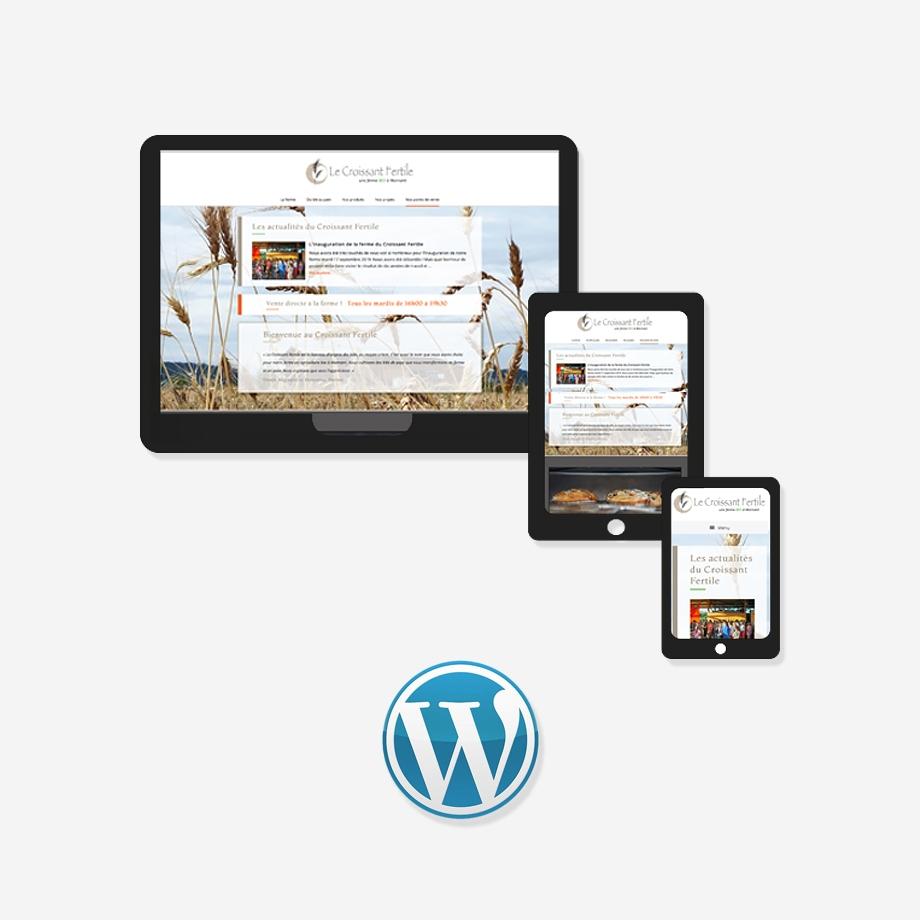 ChM création, développement site web